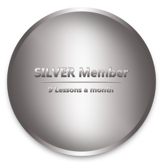 Subscription - Silver